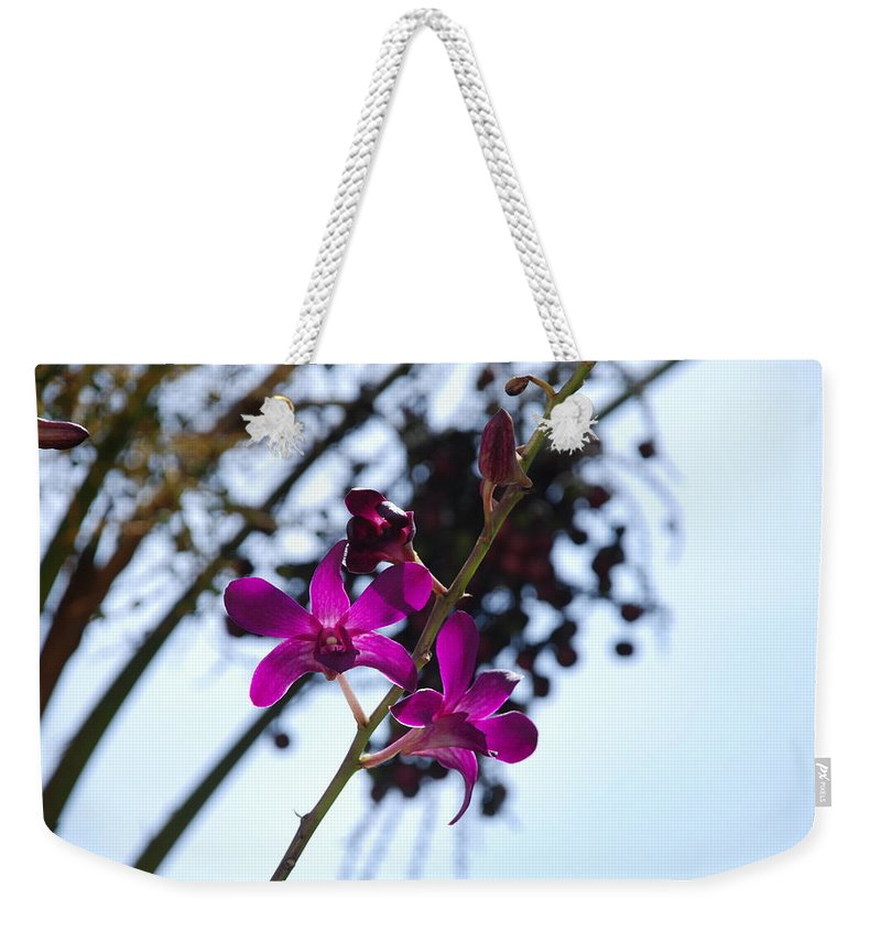Macro Weekender Tote Bag featuring the photograph Purple Flowers In The Sky by Rob Hans