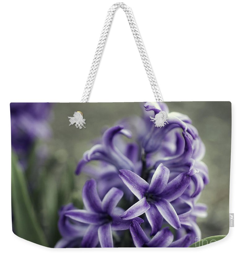 Flowers Weekender Tote Bag featuring the photograph Purple Hyacinth by Sharon McConnell