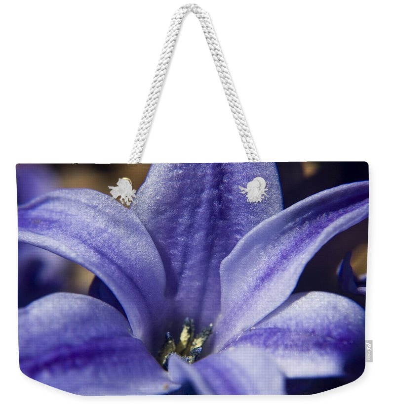 Hyacinth Weekender Tote Bag featuring the photograph Purple Hyacinth by Teresa Mucha