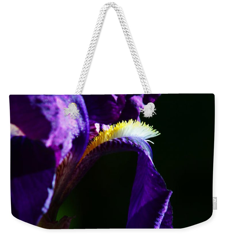 Flower Weekender Tote Bag featuring the photograph Purple Iris 2 by Anthony Jones