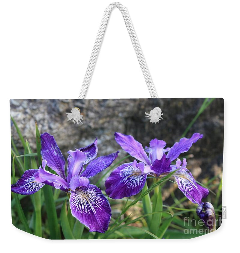 Purple Weekender Tote Bag featuring the photograph Purple Irises With Gray Rock by Carol Groenen