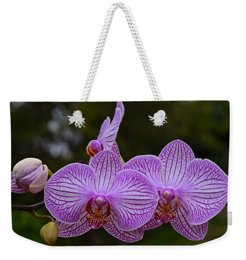 Purple Orchids Weekender Tote Bag featuring the photograph Purple Orchids by Richard Cheski