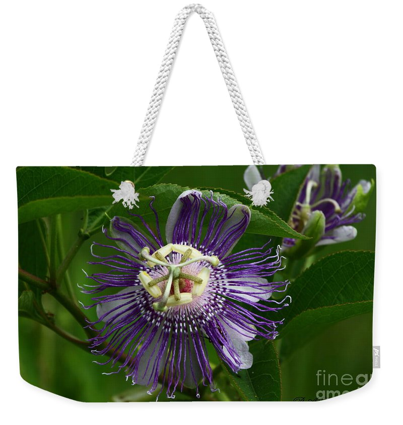 Passion Flower Weekender Tote Bag featuring the photograph Purple Passion Flower by Barbara Bowen
