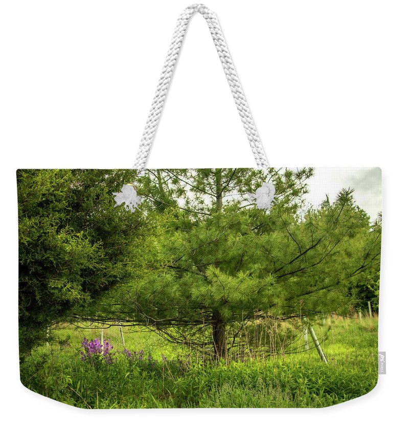 Howard Weekender Tote Bag featuring the photograph Purple Patch by Howard Roberts