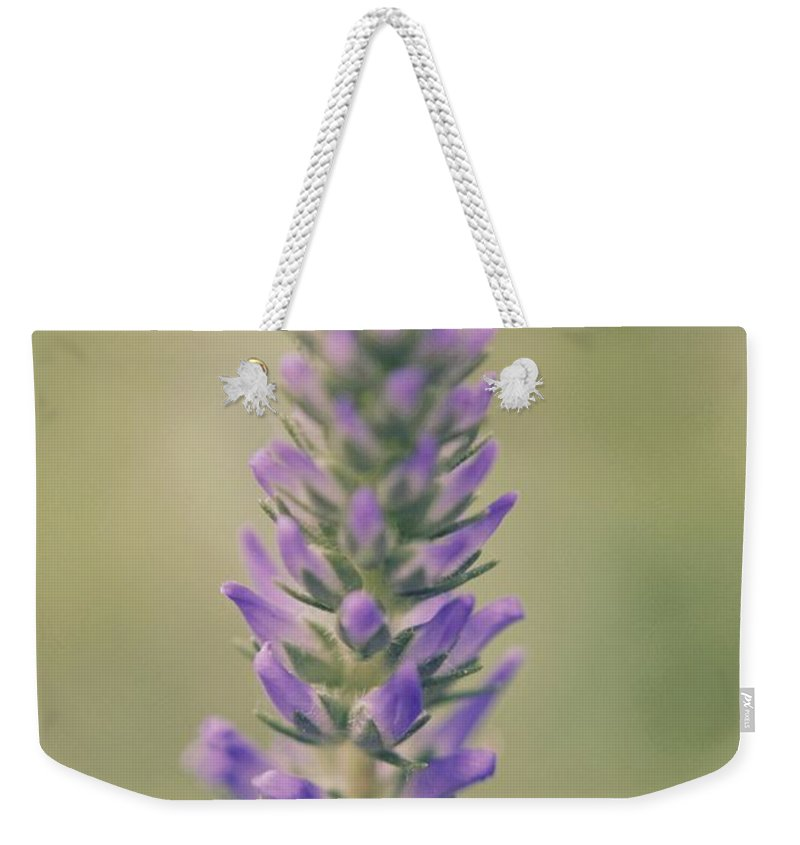 Flower Weekender Tote Bag featuring the photograph Purple Perfection by Hannah Goddard-Stuart