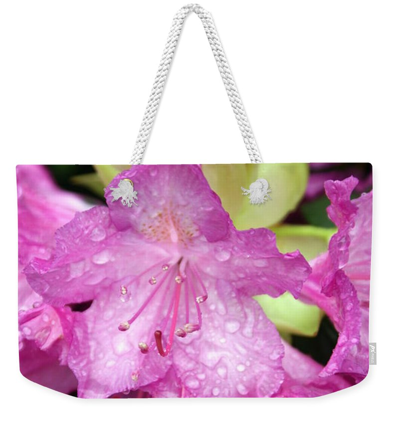 Fllowers Weekender Tote Bag featuring the photograph Purple Pink by Marty Koch