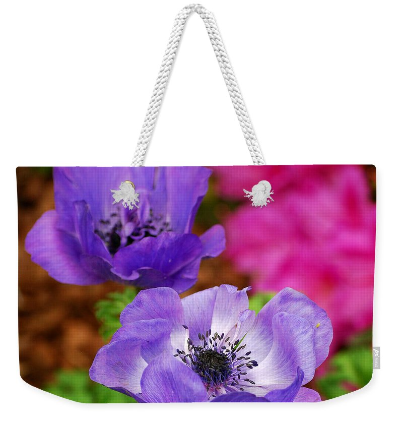 Poppies Weekender Tote Bag featuring the photograph Purple Poppies by Nancy Mueller