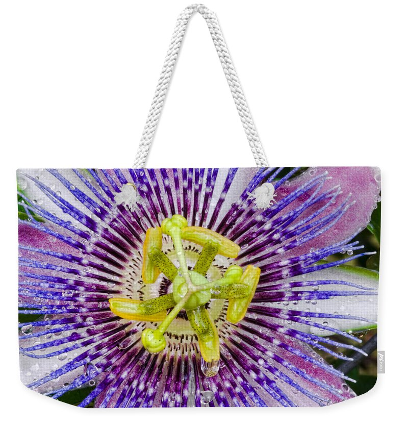 Passion Weekender Tote Bag featuring the photograph Purple Radial by Christopher Holmes