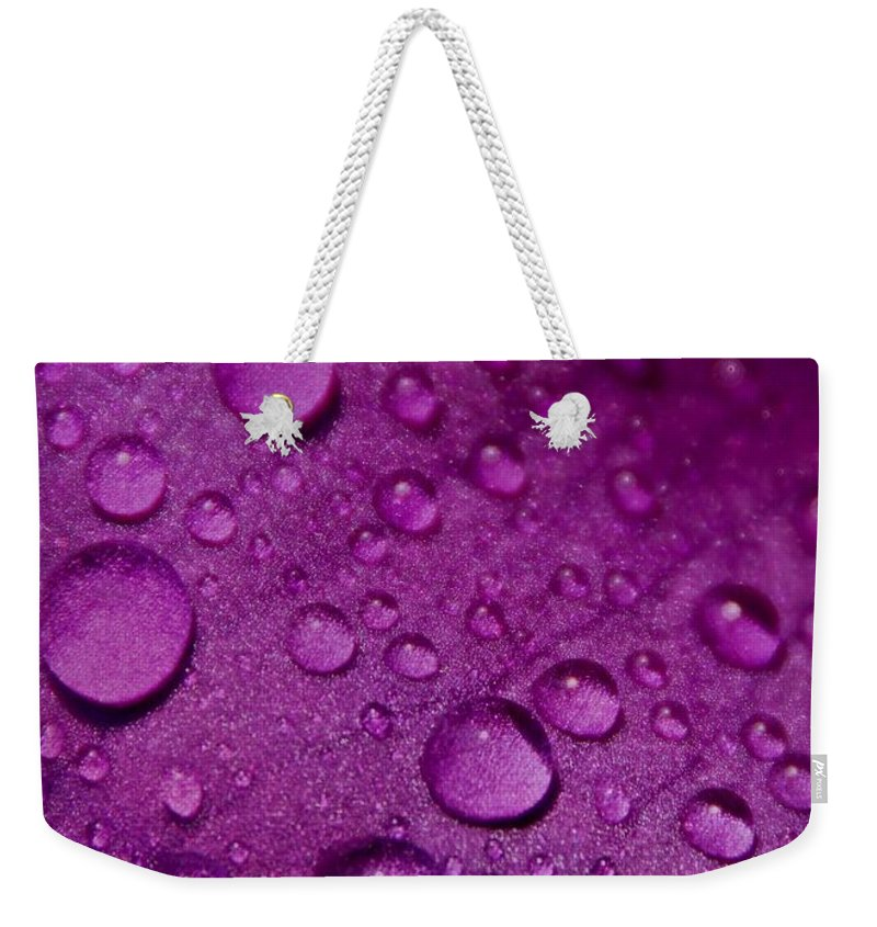 Nature Weekender Tote Bag featuring the photograph Purple Rain by Chris Berry