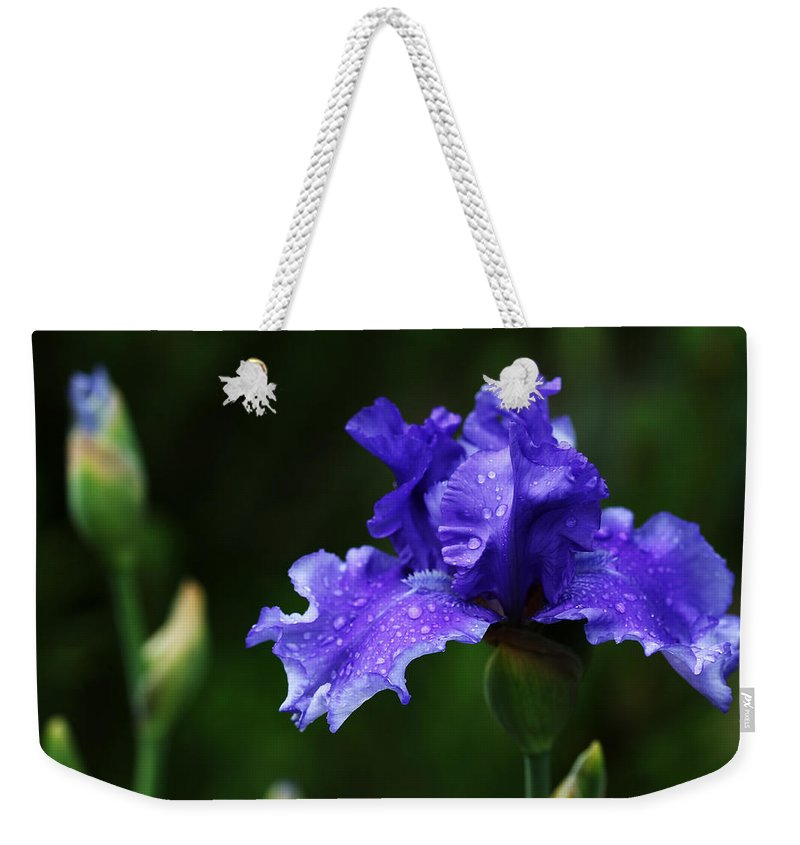 Iris Weekender Tote Bag featuring the photograph Purple Rain by Debbie Oppermann