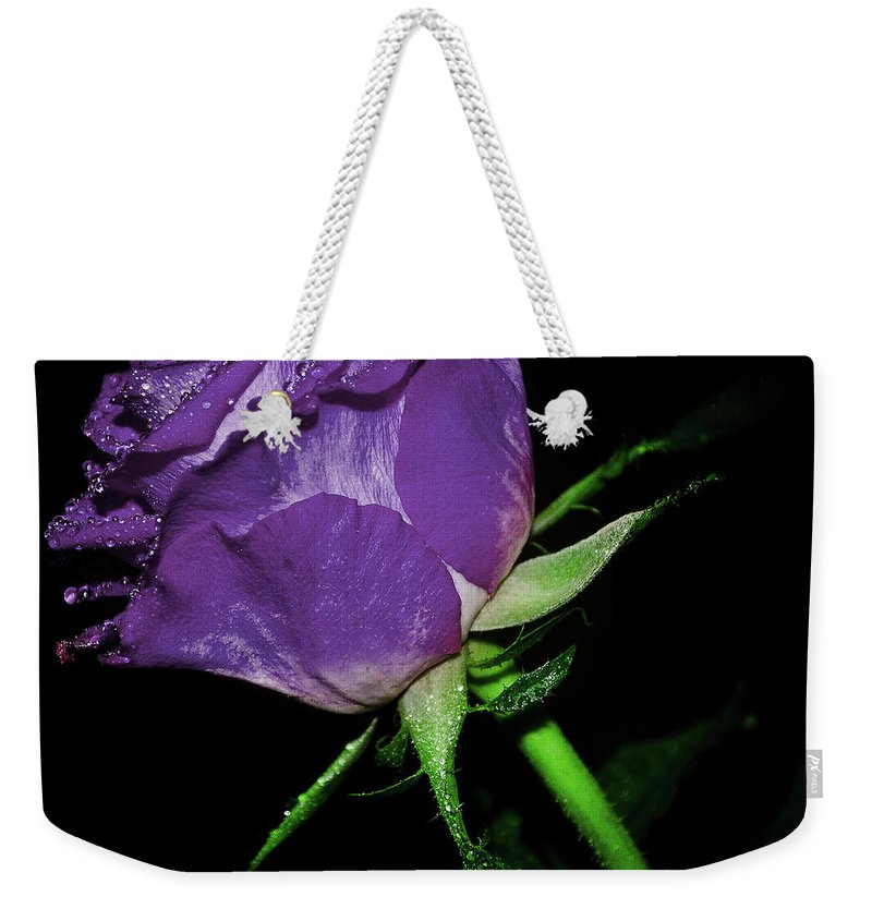 Rose Weekender Tote Bag featuring the photograph Purple Rose by Lee Pirie