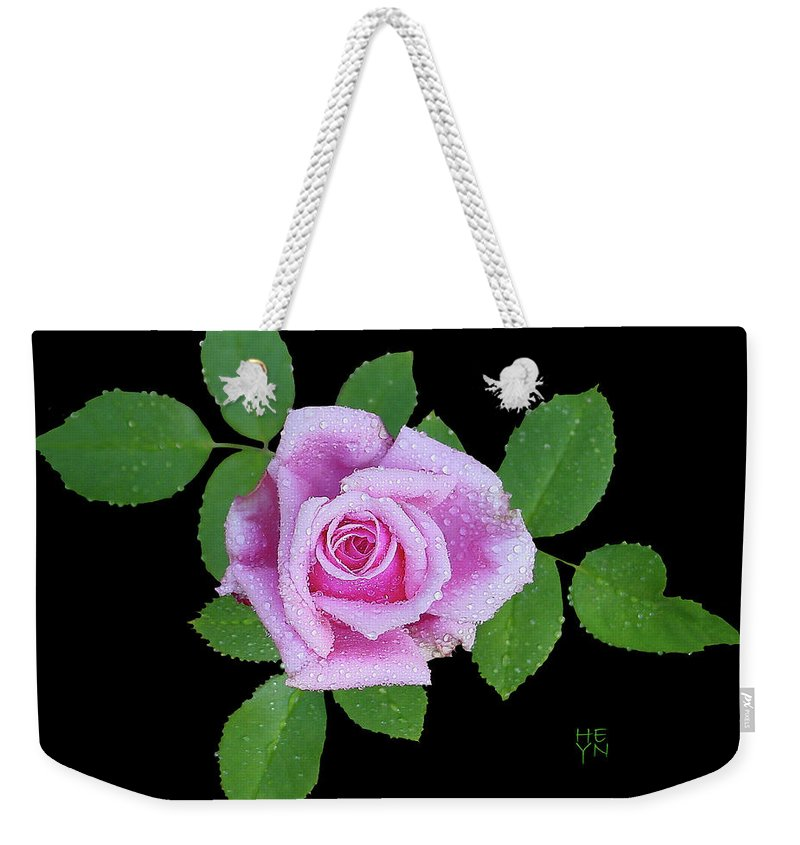 Cutout Weekender Tote Bag featuring the photograph Purple Rosebud2 Cutout by Shirley Heyn