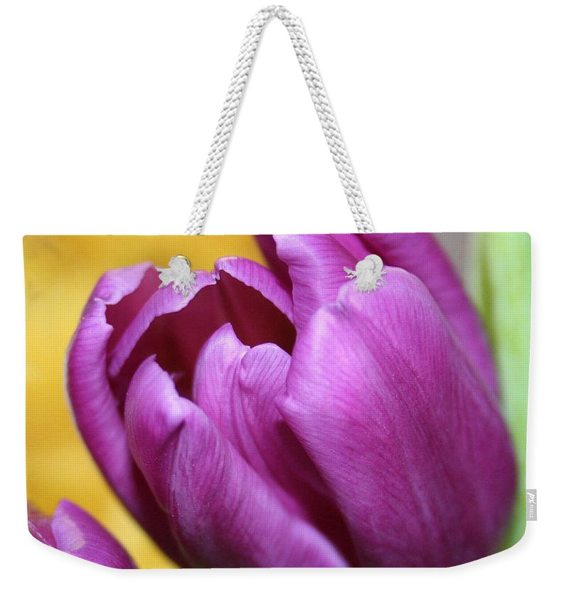 Flowers Nature Weekender Tote Bag featuring the photograph Purple Spring by Linda Sannuti