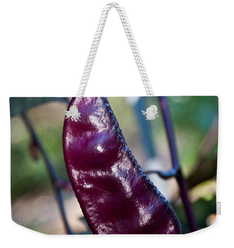 Sweet Weekender Tote Bag featuring the photograph Purple Sweet Pea Pod by Douglas Barnett