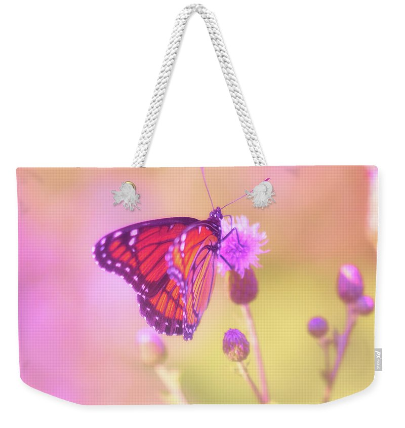 Abstract Weekender Tote Bag featuring the photograph Purple Touch by Will Jacoby Artwork