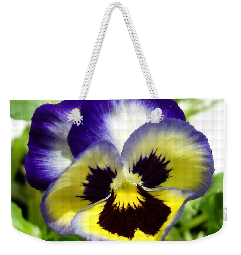 Pansy Weekender Tote Bag featuring the photograph Purple White And Yellow Pansy by Nancy Mueller
