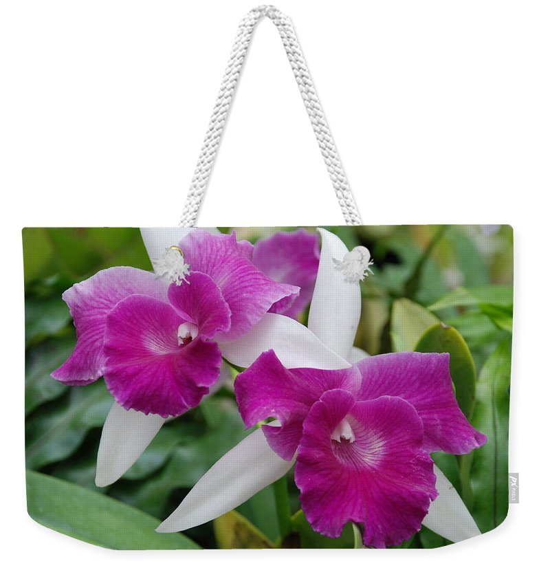 Macro Weekender Tote Bag featuring the photograph Purple White Orchids by Rob Hans