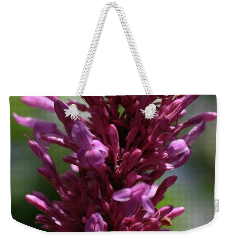 Close-up Photo Photography Flower Plant Purple Wildflower Pink Weekender Tote Bag featuring the photograph Purple Wildflower by Christina Geiger