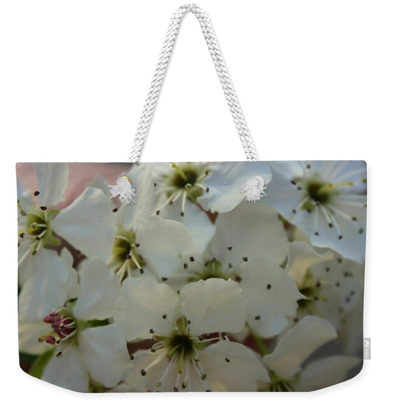 Flower Weekender Tote Bag featuring the photograph Purpleleaf Sand Cherry Blossoms by Anita Hiltz