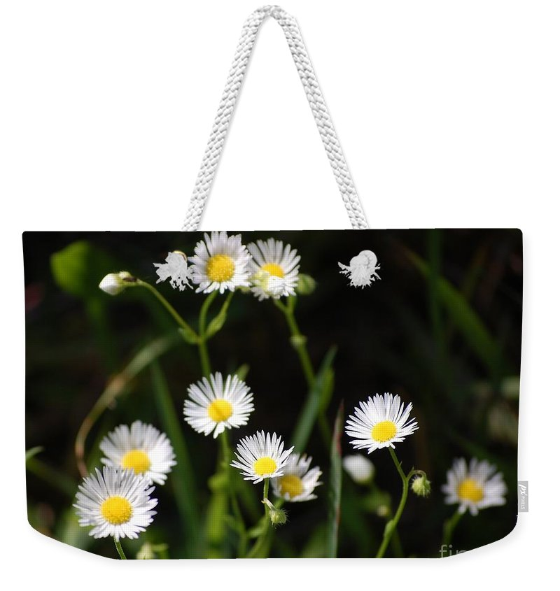 Digital Photo Weekender Tote Bag featuring the photograph Pushing Up..... by David Lane
