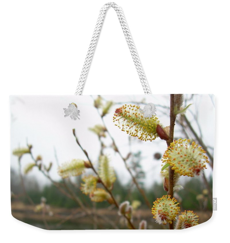Pussy Willow Weekender Tote Bag featuring the photograph Pussy Willow Blossoms by Kent Lorentzen