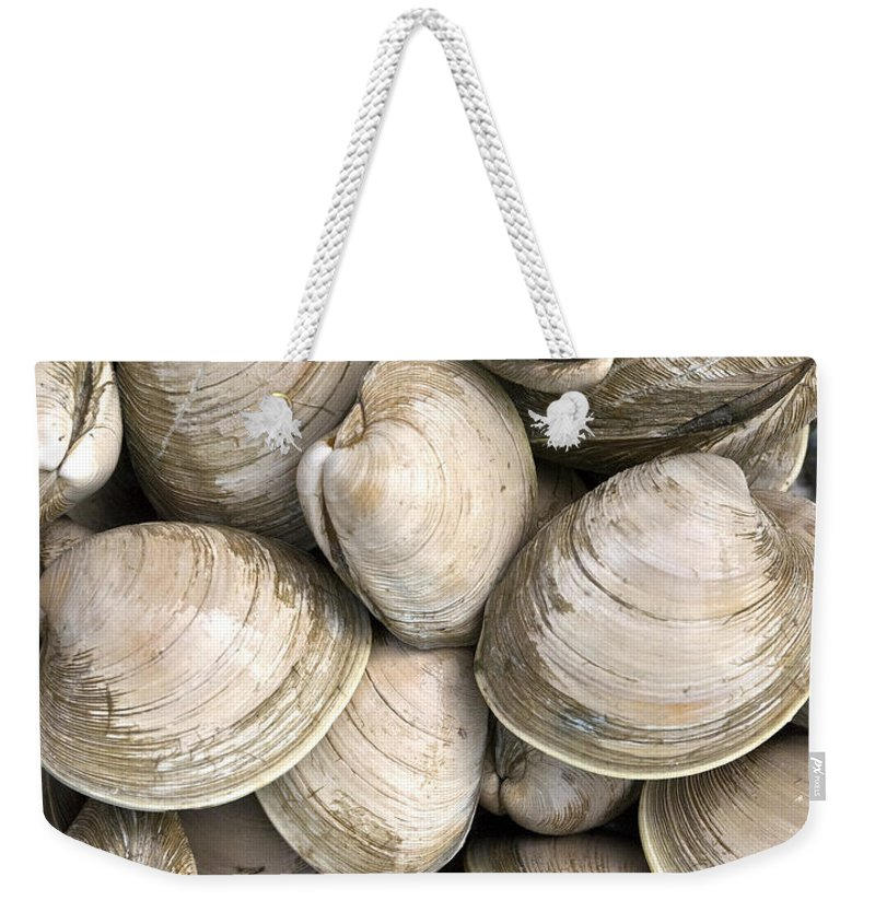 Quahogs Weekender Tote Bag featuring the photograph Quahogs by Charles Harden