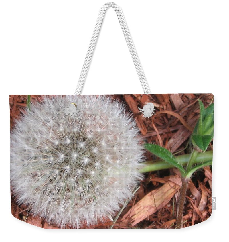Nature Weekender Tote Bag featuring the photograph Que La Nature Est Belle... by Line Gagne