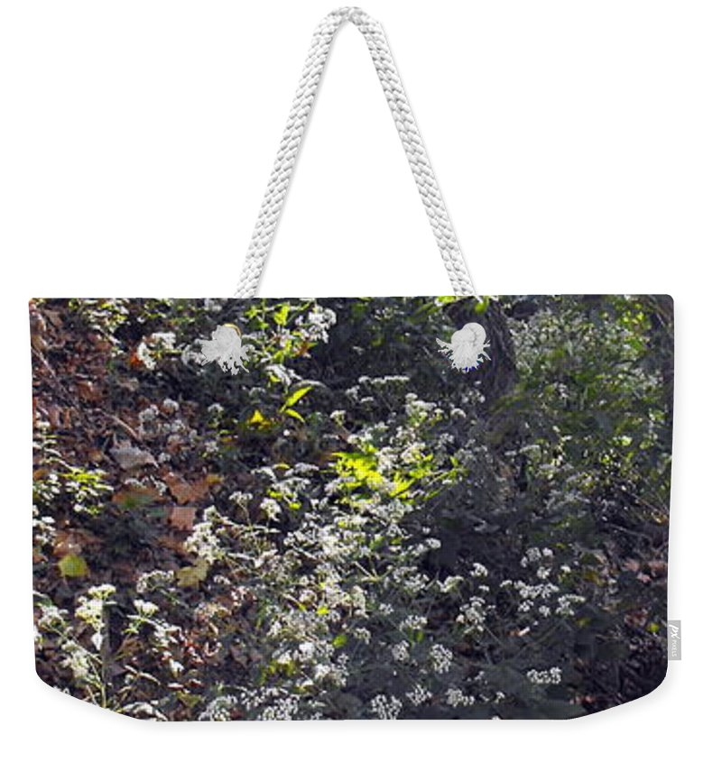 Queen Anne Lace Weekender Tote Bag featuring the photograph Queen Anne's Lace by Ginger Repke
