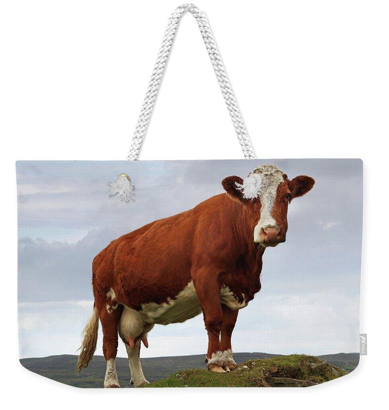 Hoofed Weekender Tote Bags