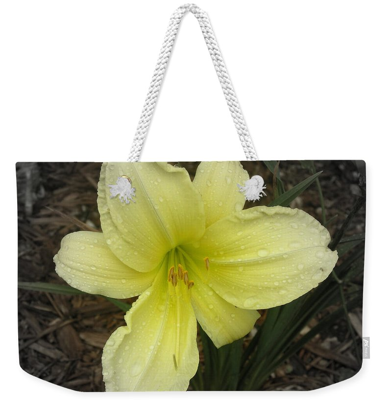 Yellow Weekender Tote Bag featuring the photograph Quenched by Davis FlowerPower