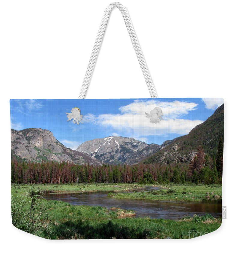Nature Weekender Tote Bag featuring the photograph Quiet by Amanda Barcon