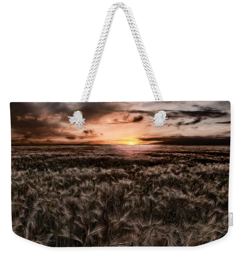 Summer Weekender Tote Bag featuring the photograph Quiet Estivation by Joachim G Pinkawa