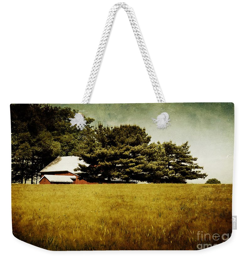 Barn Weekender Tote Bag featuring the photograph Quiet by Lois Bryan