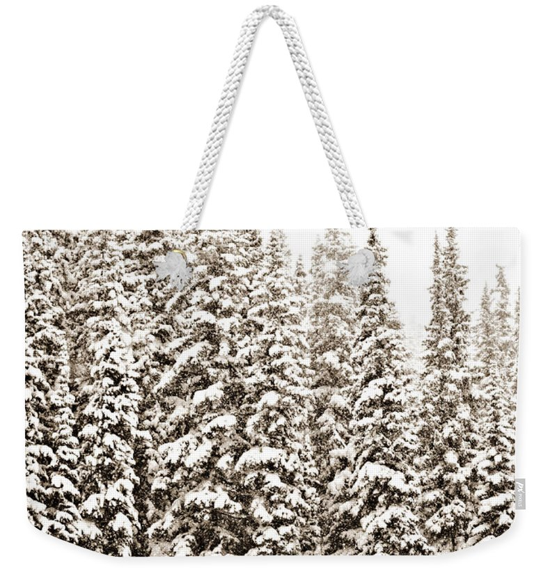 Quiet Weekender Tote Bag featuring the photograph Quiet by Marilyn Hunt