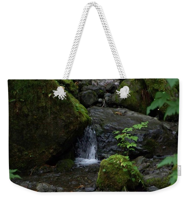 Digital Photography Weekender Tote Bag featuring the photograph Quinault Washington Rain Forest by Laurie Kidd