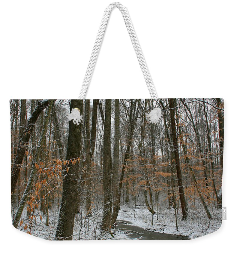 Forest Woods Water Winter Tree Snow Cold Season Nature Weekender Tote Bag featuring the photograph Quite Path by Andrei Shliakhau