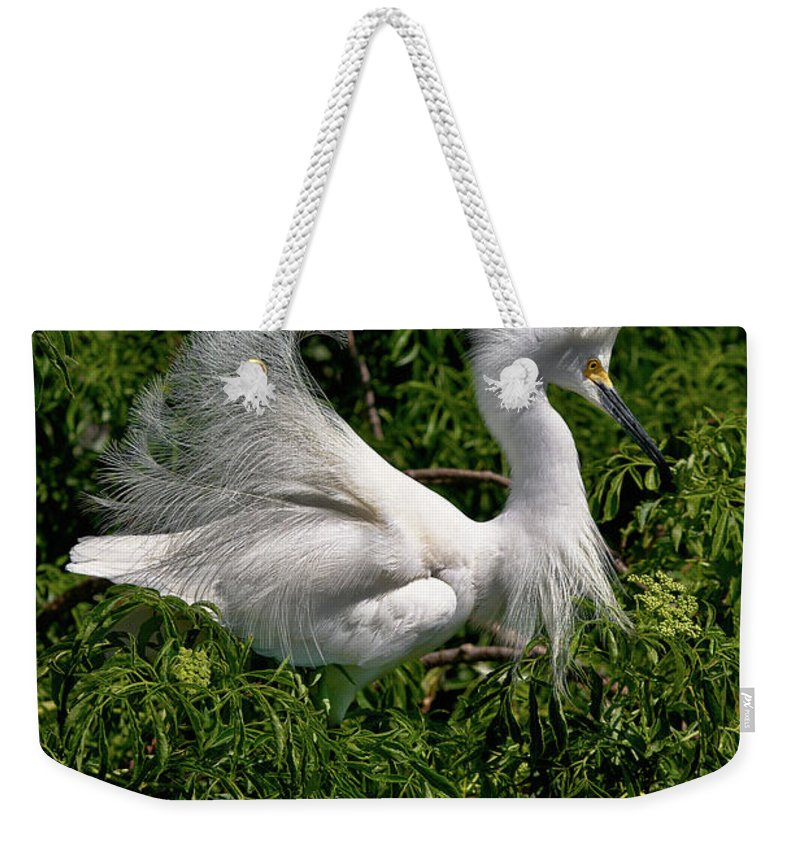 Snowy Egret Weekender Tote Bag featuring the photograph Quite The Doo by Christopher Holmes