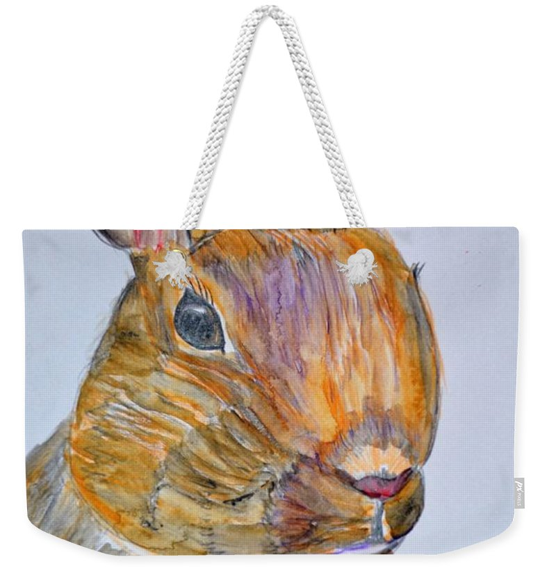 Rabbit Watercolor 15-01 Weekender Tote Bag featuring the painting Rabbit Watercolor 15-01 by Maria Urso