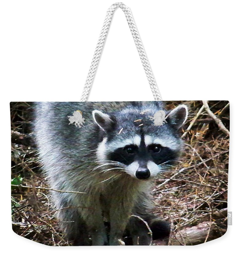 Painting Weekender Tote Bag featuring the photograph Raccoon by Anthony Jones