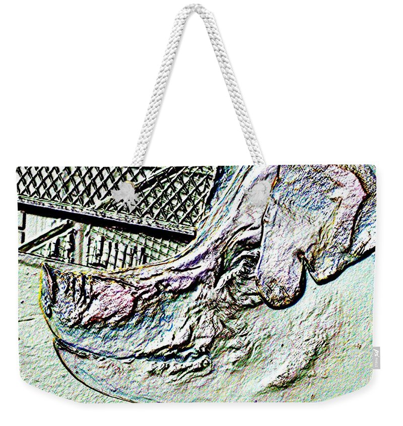 Seattle Weekender Tote Bag featuring the photograph Rachael The Market Pig by Tim Allen