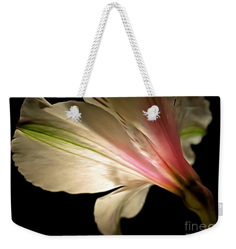 Amaryllis Weekender Tote Bag featuring the photograph Radiance Of Hope by Krissy Katsimbras