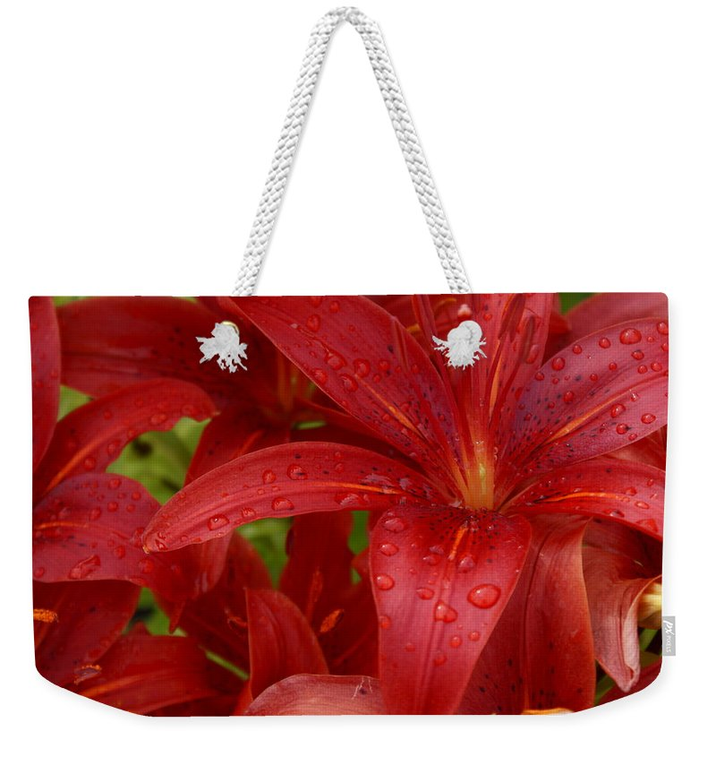 Rain Drops On Lilies Weekender Tote Bag featuring the photograph Rain Drops Keep Falling On My Head by Joanne Smoley