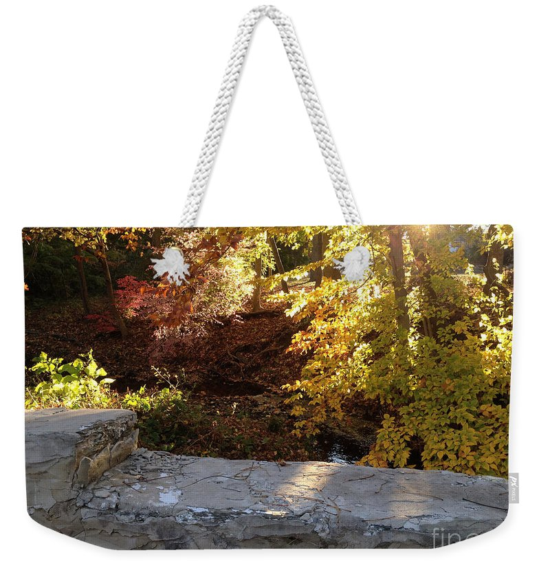 Brook Weekender Tote Bag featuring the photograph Rainbow Brook by Clay Cofer