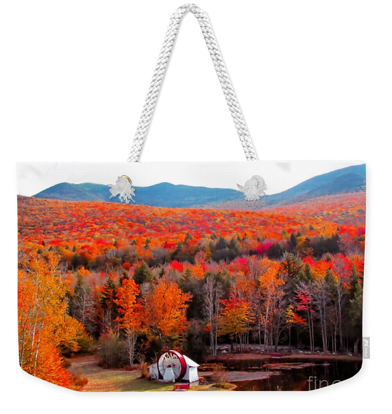 Autumn Weekender Tote Bag featuring the photograph Rainbow Of Autumn Colors by Elizabeth Dow