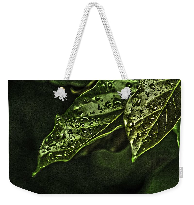 Raindrops Weekender Tote Bag featuring the photograph Raindrops Hdr by Totto Ponce