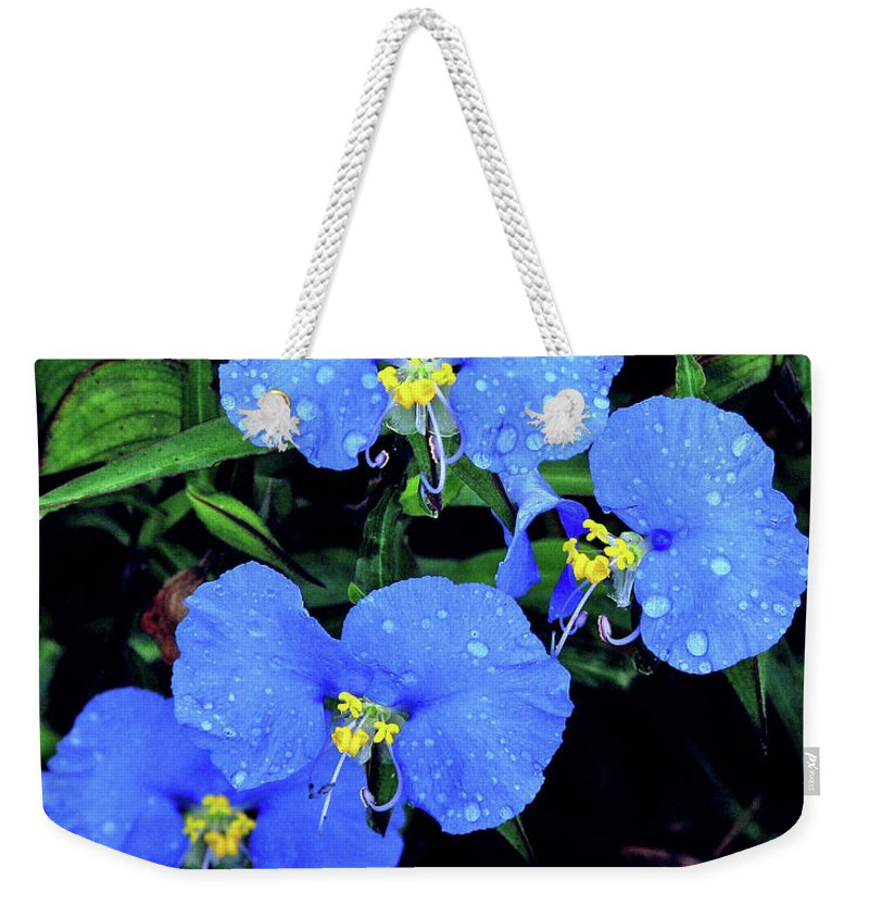 Nature Weekender Tote Bag featuring the photograph Raindrops In Blue by Peg Urban