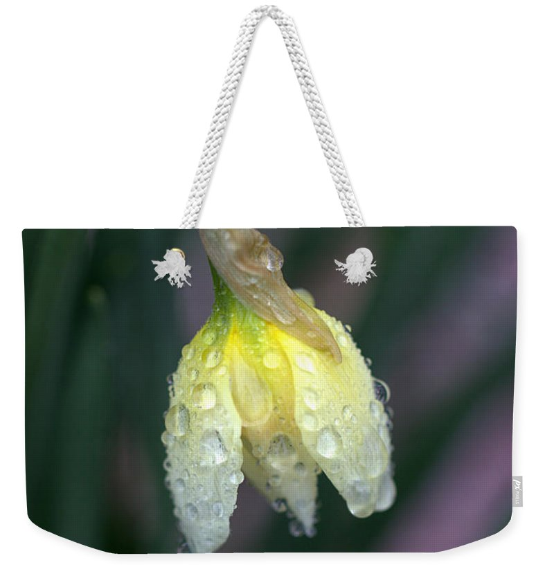 Joseph Skompski Weekender Tote Bag featuring the photograph Raindrops by Joseph Skompski