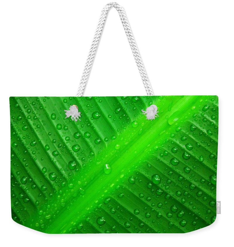Nature Weekender Tote Bag featuring the photograph Raindrops ... by Juergen Weiss