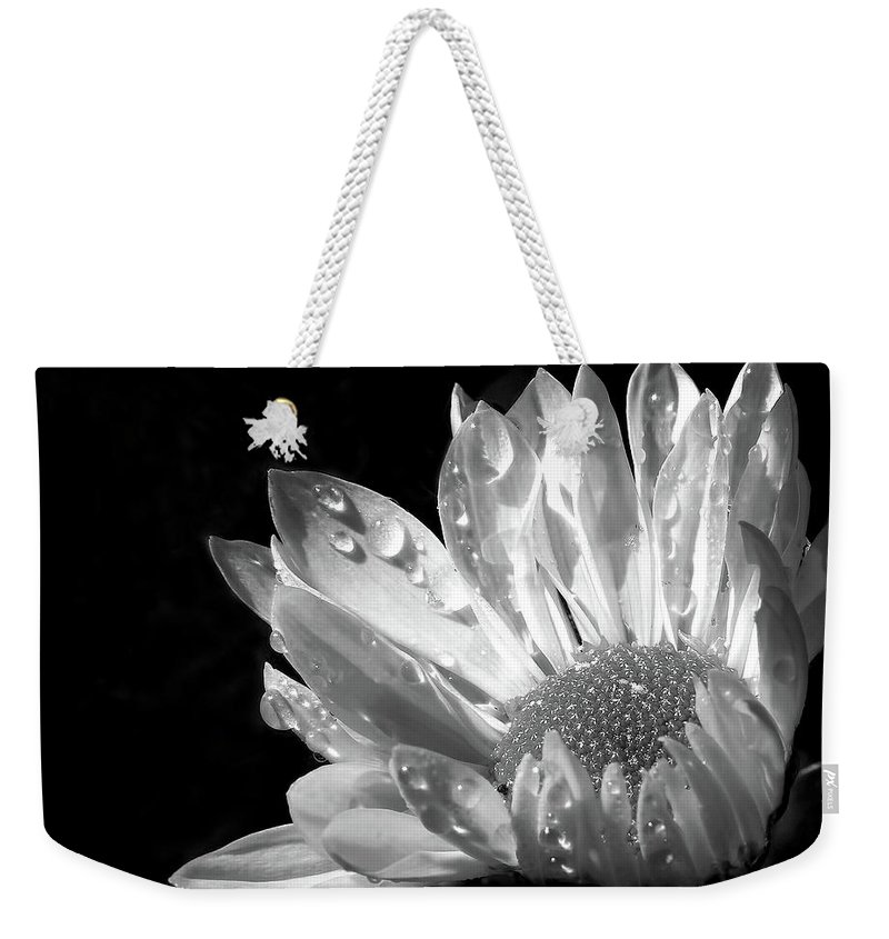 Daisy Weekender Tote Bag featuring the photograph Raindrops On Daisy Black And White by Jennie Marie Schell