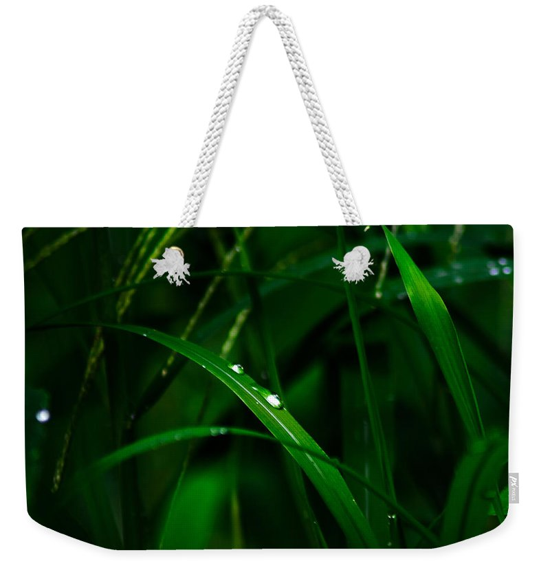 Raindrops Weekender Tote Bag featuring the photograph Raindrops by Totto Ponce